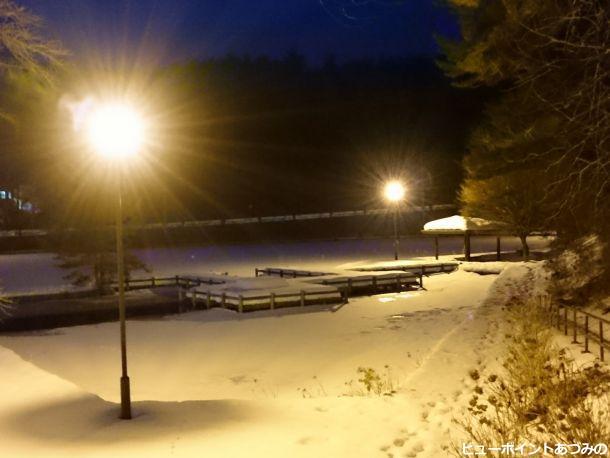 雪夜に輝く池