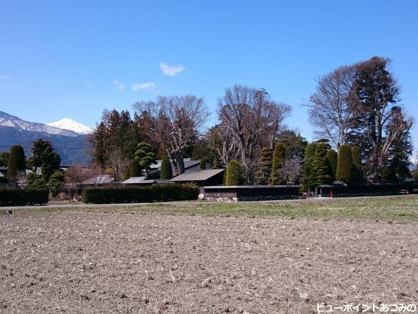 屋敷林と常念岳