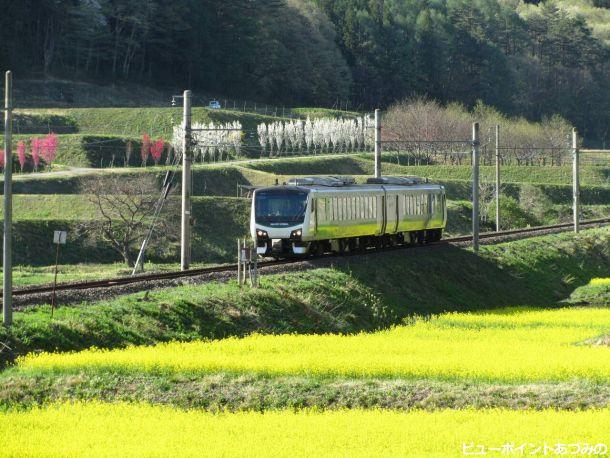 菜の花畑と大糸線