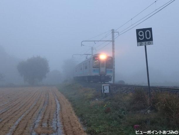 朝霧を駆け抜けて
