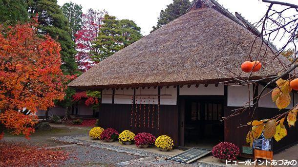 秋の高橋節郎生家