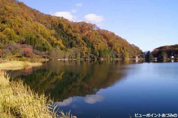 秋も中綱湖