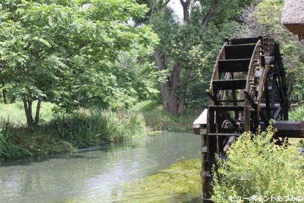 清流を見守る水車
