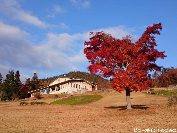 創造館と紅葉