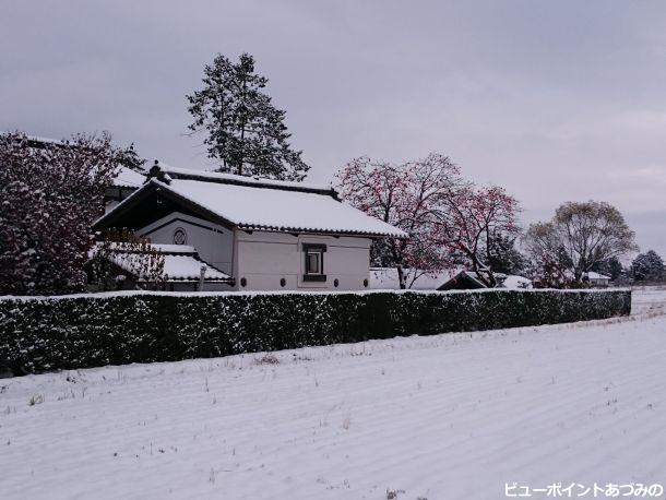 晩秋の雪景色