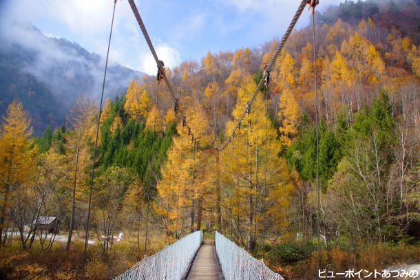 紅葉と吊橋