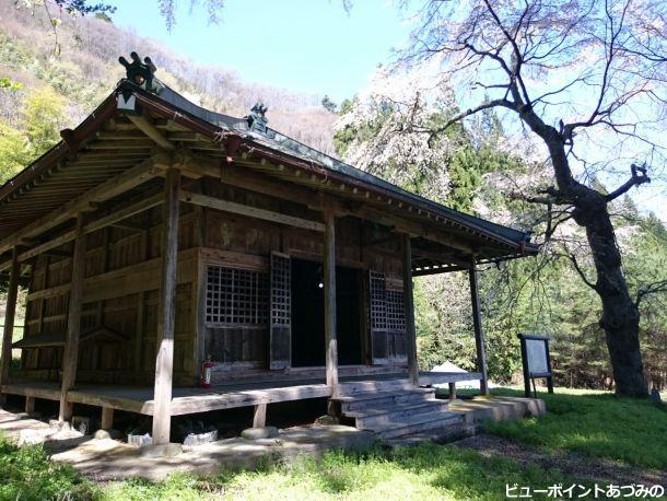 光久寺薬師堂と桜