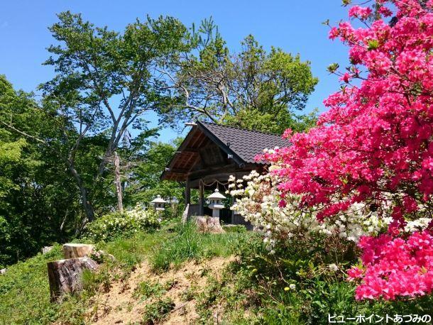 ツツジと古峰神社