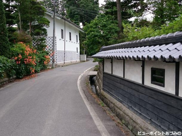 屋敷林の小路