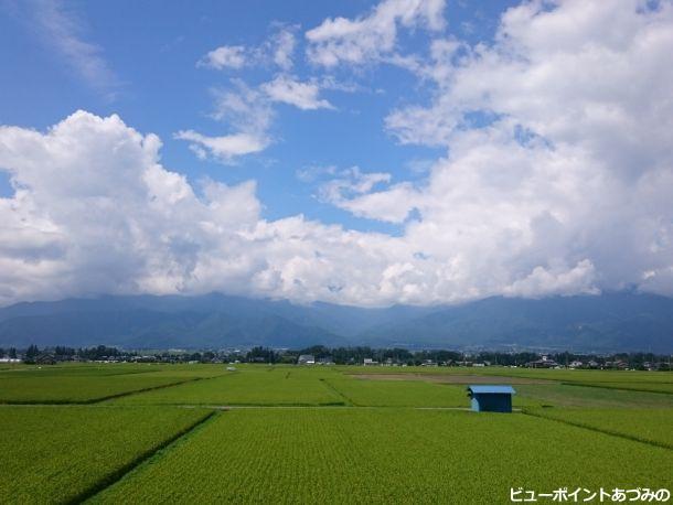 夏空と田園