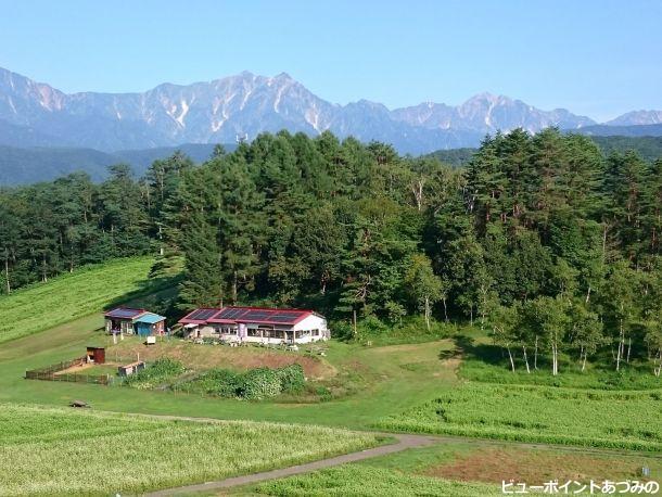 中山高原の蕎麦畑
