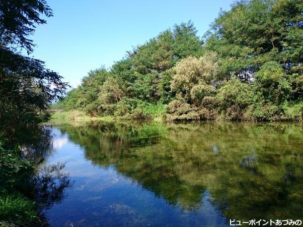 三角島湧水池