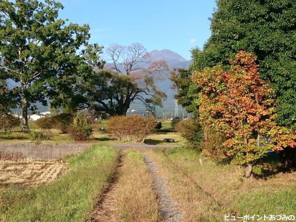 秋色の田舎路と常念