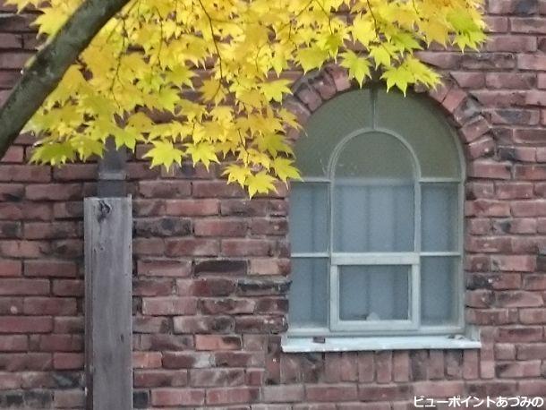煉瓦アーチと黄葉