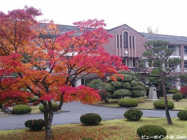 秋色の学び舎