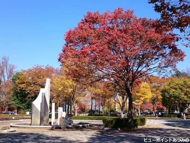 文化の日の文化公園