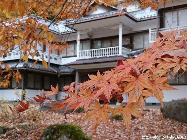 秋色のバルコニー