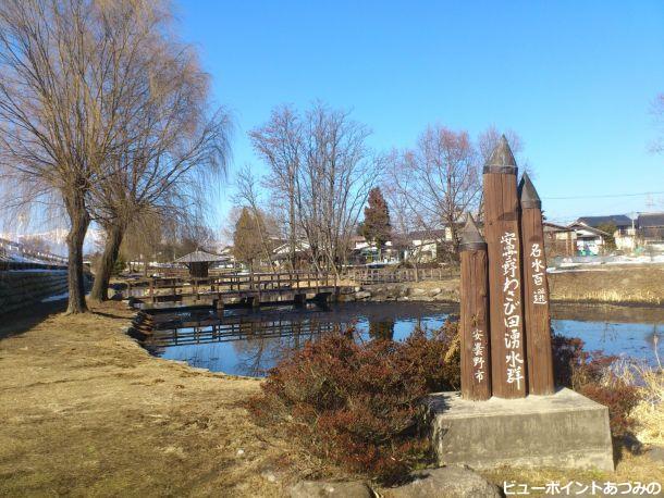 冬の憩いの池