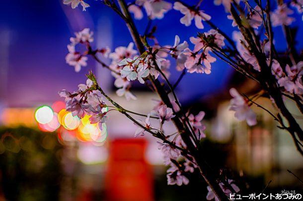春田舎の黄昏