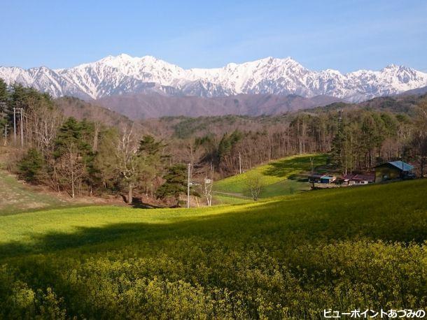 中山高原の春