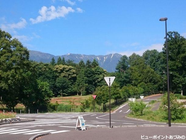 蝶ヶ岳の雪形「蝶」