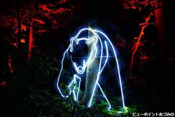 森の熊より