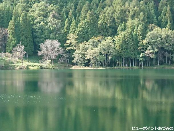 幻想的な湖面