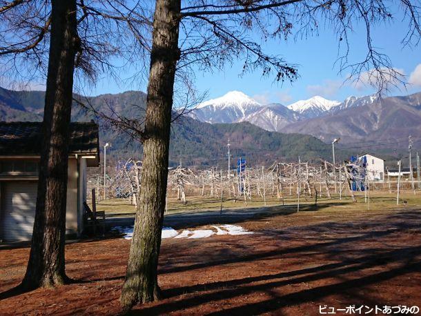 林檎畑と常念岳