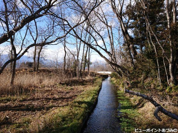 旧わさび田の湧水
