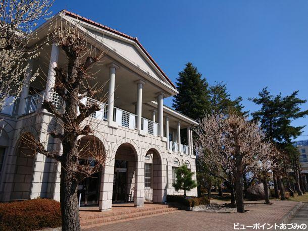 列柱とアーチと魯桃桜