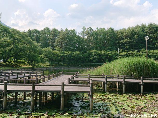 室山池の木道
