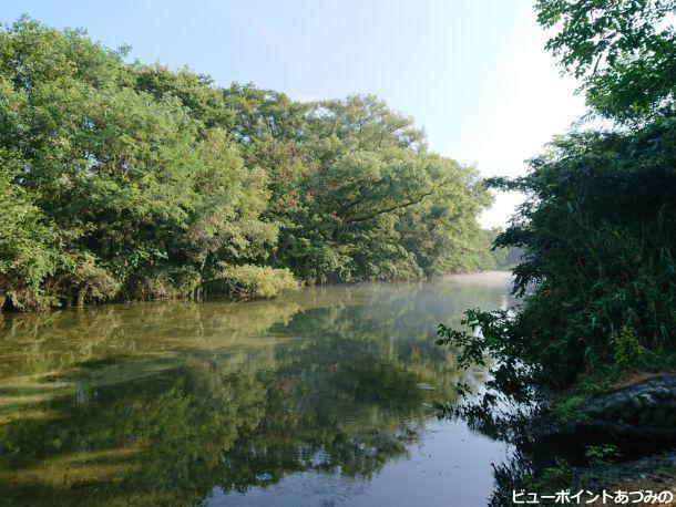 三角島の湧水路