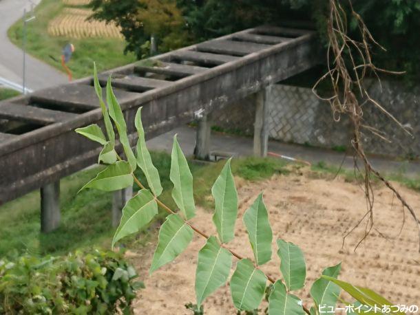 松葉沢水路橋