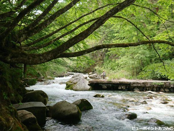 新緑の烏川渓谷