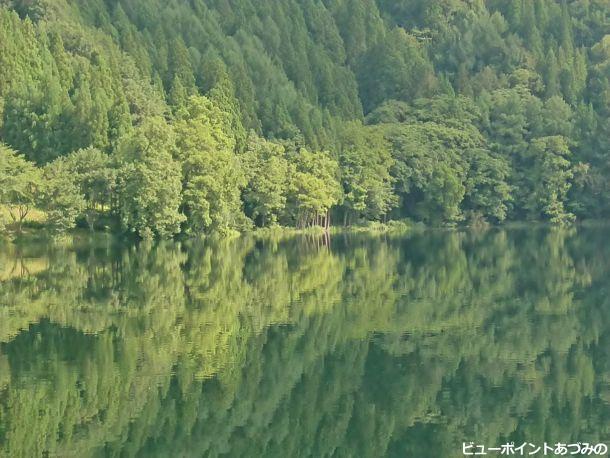 深緑の水鏡