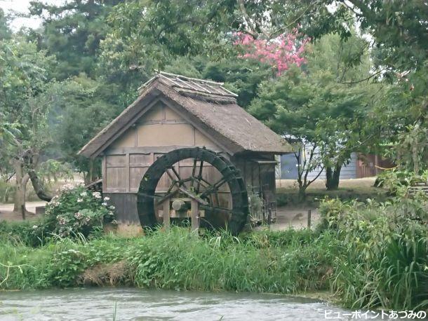 水車小屋と百日紅