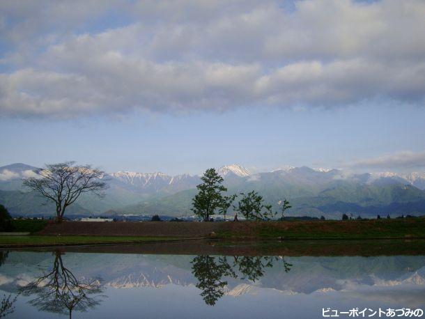 初夏の田園と常念岳
