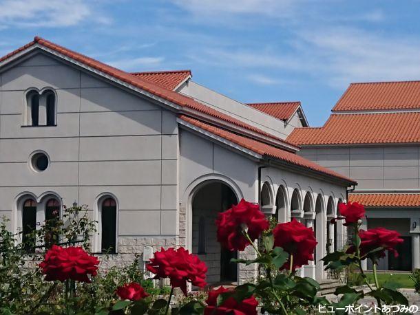 美術館を彩る薔薇