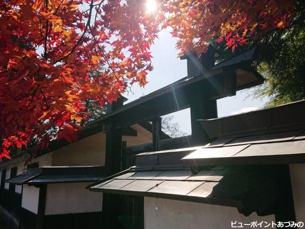 紅葉と冠木門