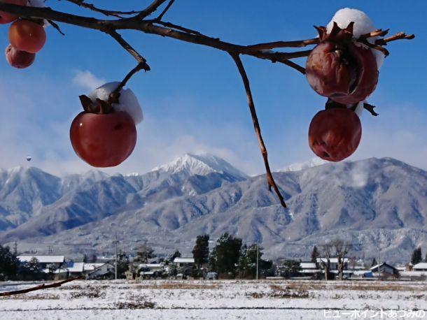 木守柿と常念岳