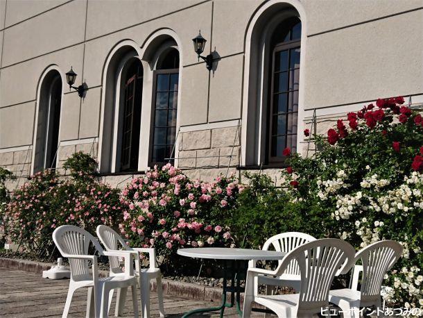 アーチ窓と薔薇