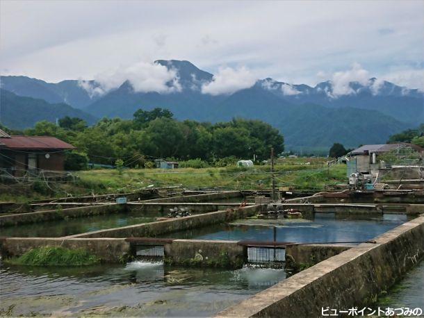 養鱒場と有明山