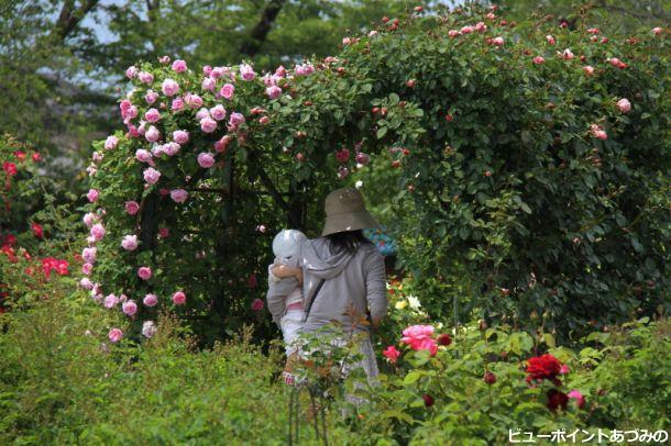 バラの門をくぐる母子