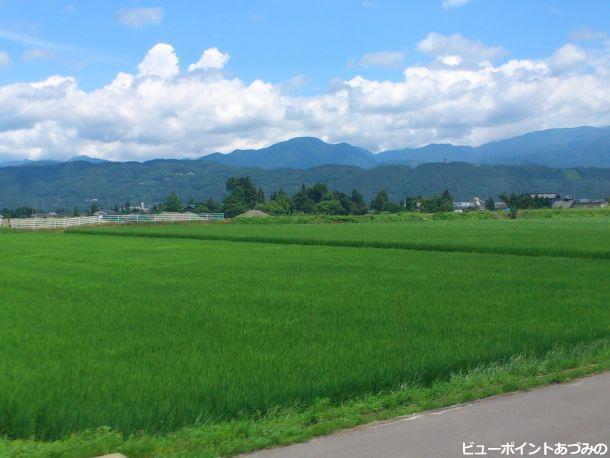 田園風景と白い雲