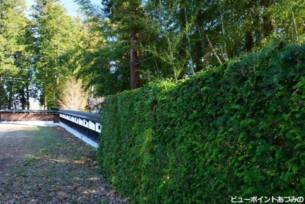 緑の生け垣と塀