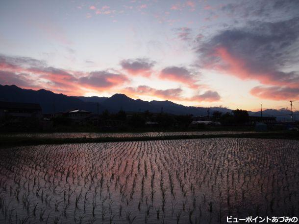 夕方の影(シルエット)