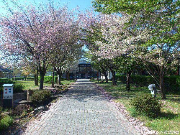 義民の里の桜